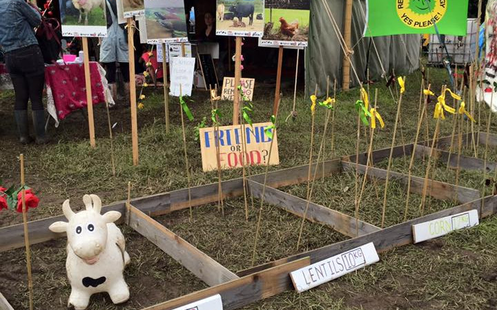 Vegan Outreach in the Mud! Glastonbury 2016