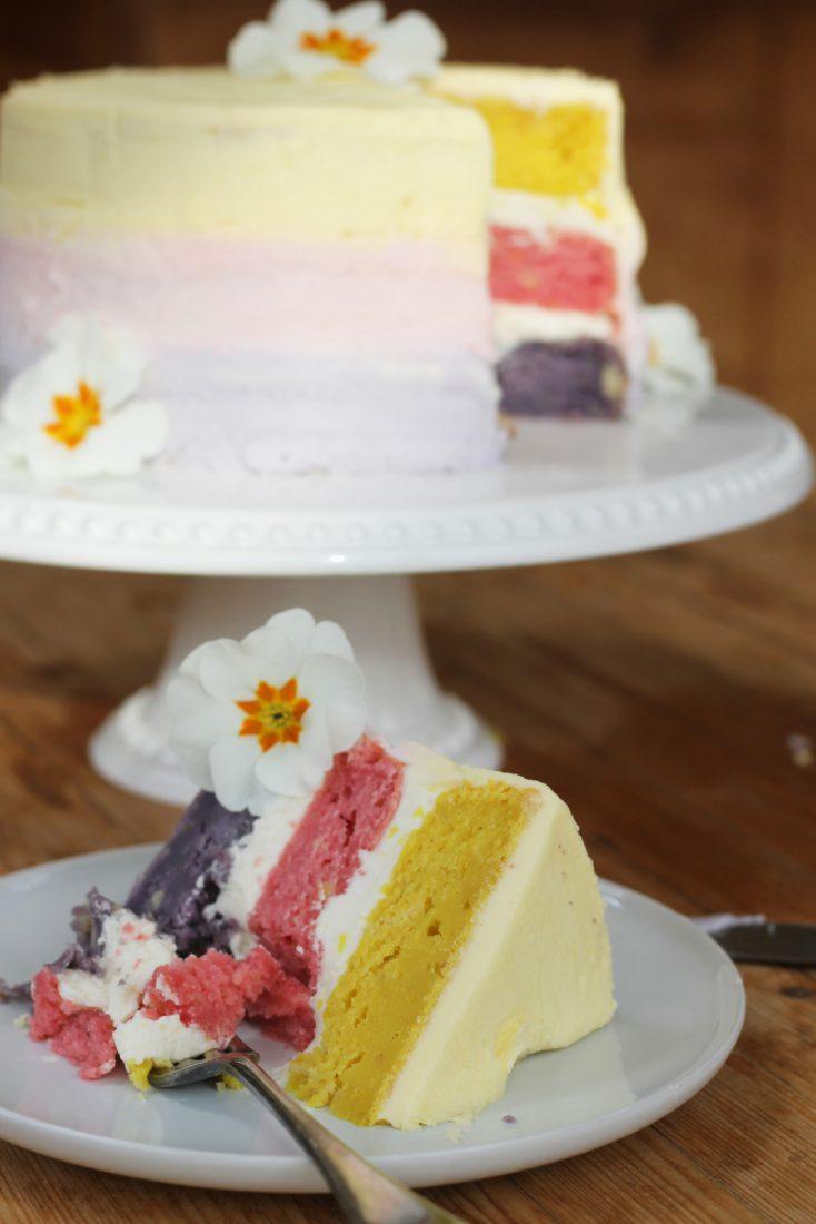 Vegan Easter Rainbow Cake